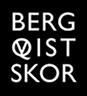 Bergqvist Skor